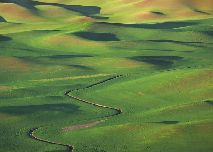 Palouse Greeting Card featuring the photograph Curves And Swirls by Peggy Kahan