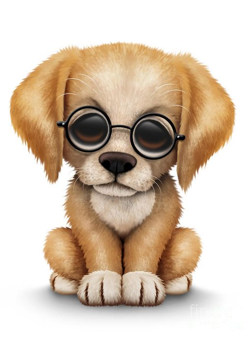 Cute golden retriever puppy dog wearing eye glasses greeting card golden retriever greeting card featuring the digital art cute golden retriever puppy dog wearing eye glasses m4hsunfo
