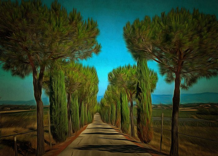 Paciano Greeting Card featuring the photograph Cypress Avenue by Dorothy Berry-Lound