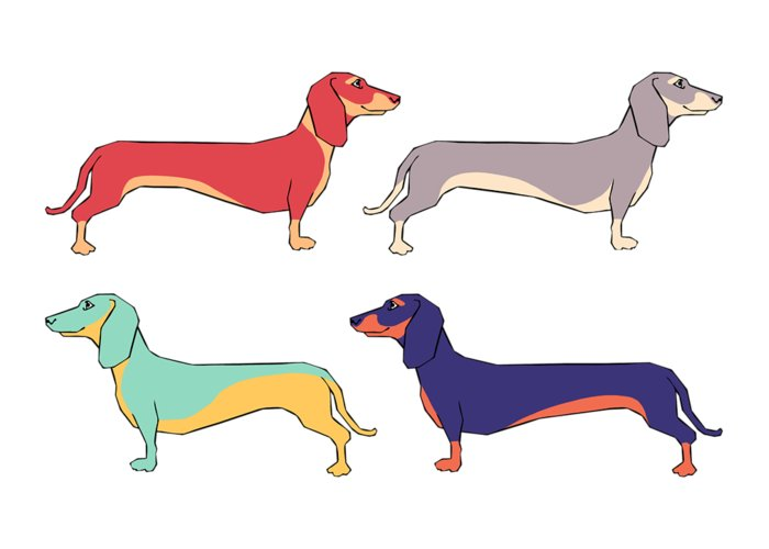 Dachshund Drawings Greeting Cards
