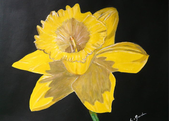 Flower Flora Yellow Green Black Cathy Jourdan Greeting Card featuring the painting Daffodil by Cathy Jourdan
