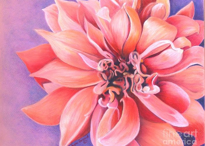 Dahlia Greeting Card featuring the drawing Dahlia 2 by Phyllis Howard