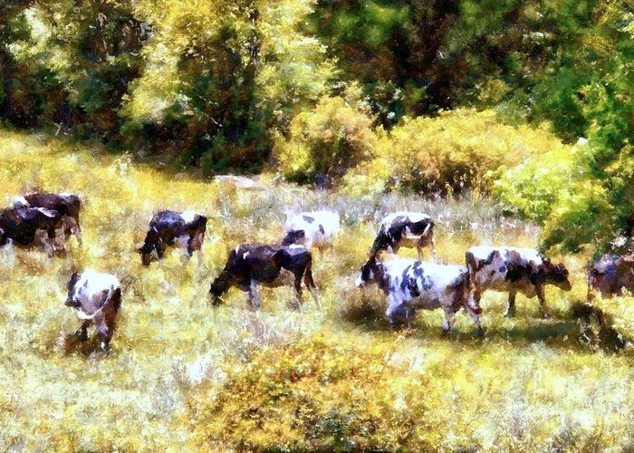 Holstein Cows Greeting Card featuring the photograph Dairy Cows In A Summer Pasture by Janine Riley