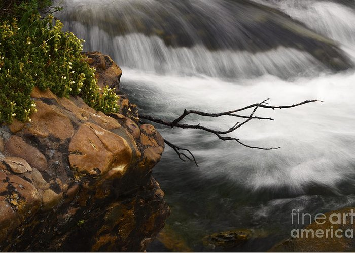 Water Greeting Card featuring the photograph Dancing Waters 3 by Bob Christopher