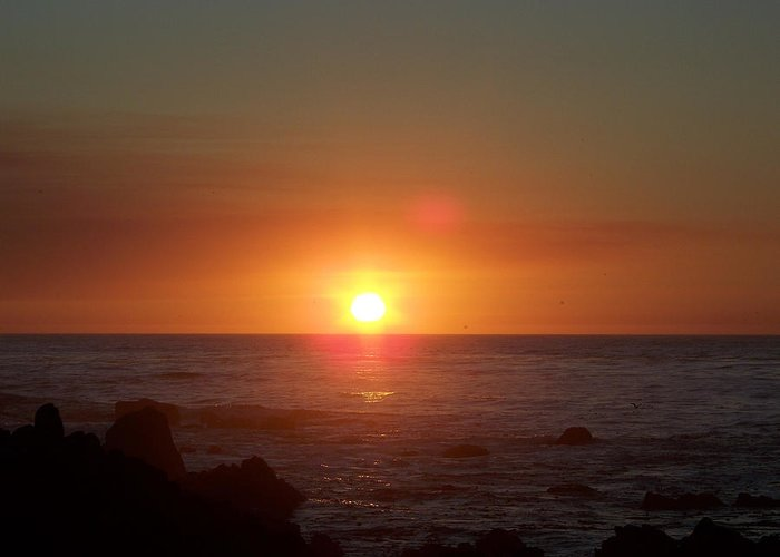 Sunsets Greeting Card featuring the photograph Dark Glow by Maggie Cruser