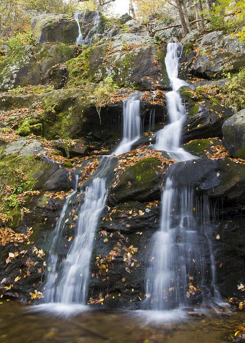 Shenandoah Greeting Card featuring the photograph Dark Hollow Falls Shenandoah National Park by Pierre Leclerc Photography