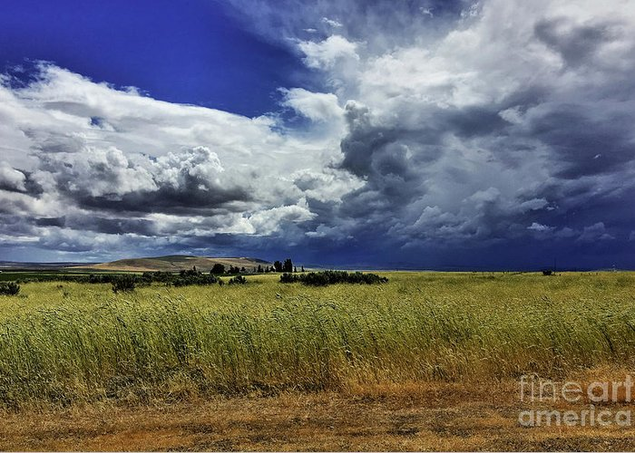 Greeting Card featuring the photograph Dark Skies by Don Siebel