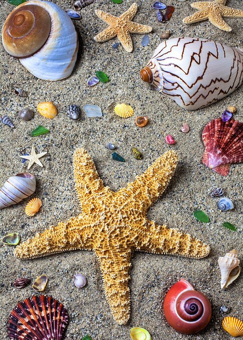 Starfish Greeting Card featuring the photograph Day At The Beach by Garry Gay