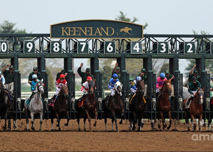 Keeneland Race Track Greeting Cards