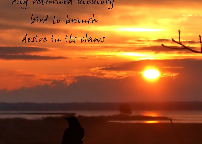 Poetry Greeting Card featuring the photograph Day Returned Memory by Bruce Tracy