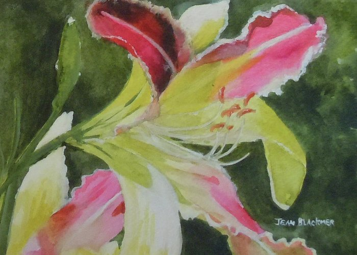 Daylily Greeting Card featuring the painting Daylily Study 1 by Jean Blackmer