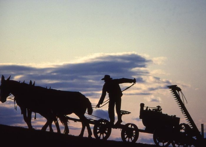 Amish Farmers Greeting Card featuring the photograph Day's End Amish Farmer Barnhill by Blair Seitz