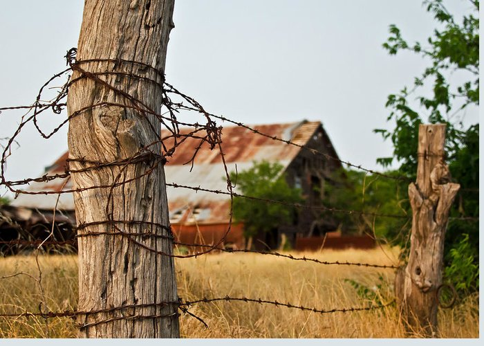 Fence Greeting Card featuring the photograph Days Gone By by Lisa Moore