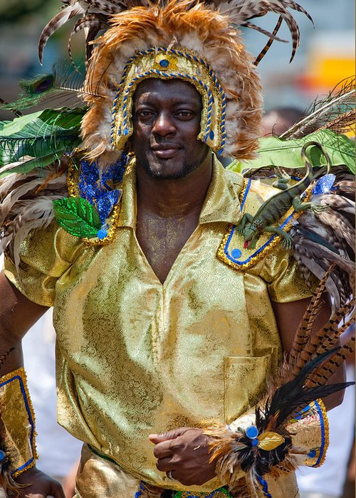 Festival Greeting Card featuring the photograph Dc Caribbean Carnival No 21 by Irene Abdou