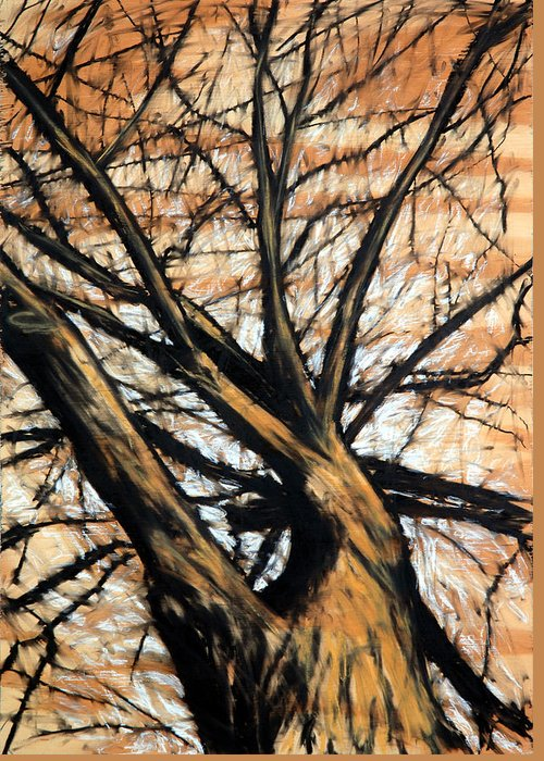 Tree Greeting Card featuring the drawing Dead Elm by John Terwilliger