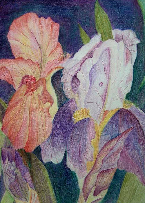 Iris Greeting Card featuring the drawing Dear Iris by Vijay Sharon Govender