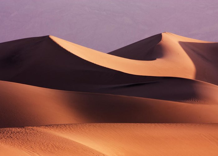 Death Valley Greeting Card featuring the photograph Death Valley Dunes by Matt Trimble