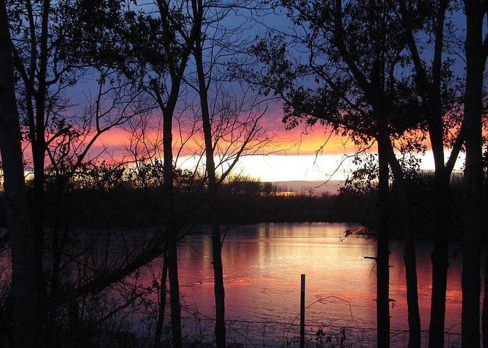 Red Gold Blue Lake Trees Greeting Card featuring the photograph December Sunset by Luciana Seymour