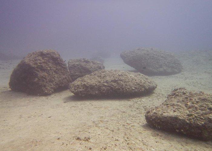 Aquatic Greeting Card featuring the photograph Deep Rocks by Michael Scott