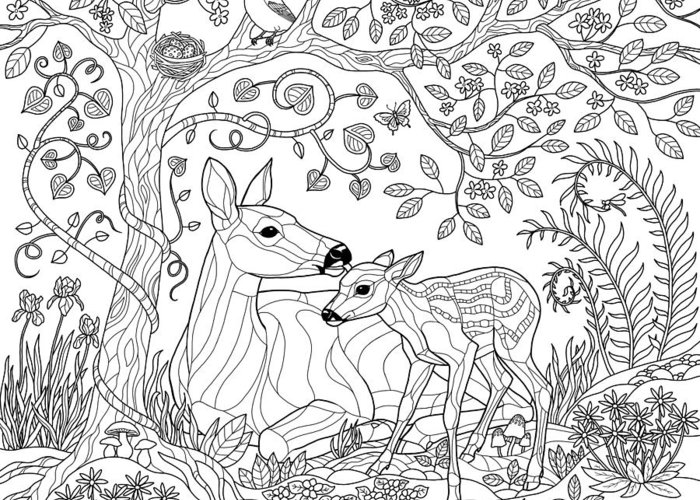 Deer Fantasy Forest Coloring Page Greeting Card For Sale By Crista Forest