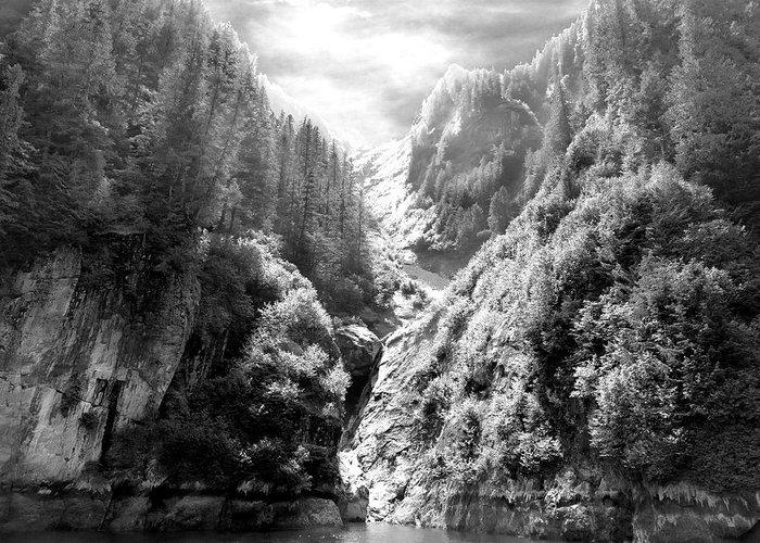 Alaska Greeting Card featuring the photograph Denali National Park 2 by Dick Goodman