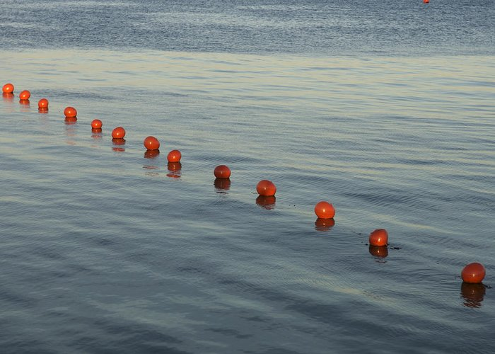 Abstract Greeting Card featuring the photograph Denmark Red Safety Balls Floating by Keenpress