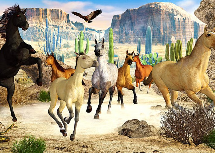 Horses Greeting Card featuring the photograph Desert Horses by Peter J Sucy