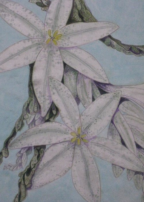 Floral Greeting Card featuring the painting Desert Lillie Close-up by David Kelly