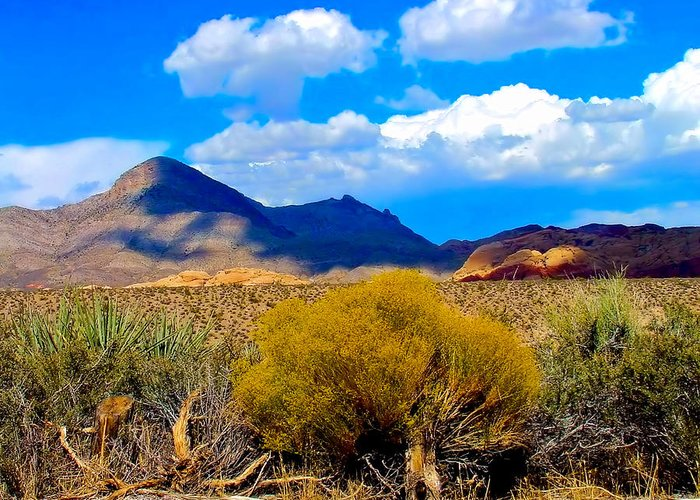 Desert Greeting Card featuring the photograph Desert View by Bob Welch