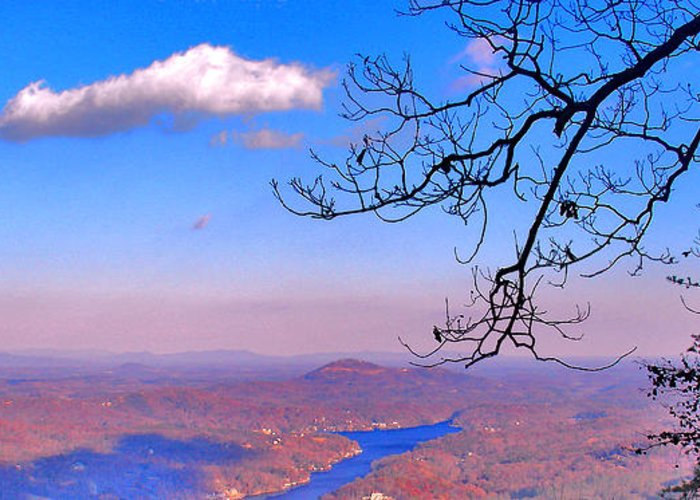 Landscape Greeting Card featuring the photograph Detail From Reaching For A Cloud by Steve Karol