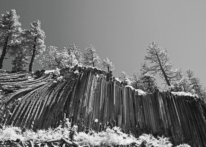 Infrared Art Greeting Card featuring the photograph Devil's Postpile - Frozen Columns Of Lava by Christine Till