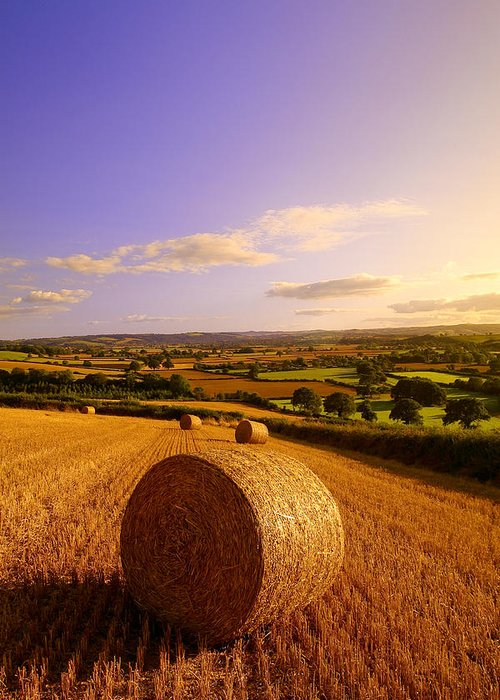 Haybales Greeting Cards
