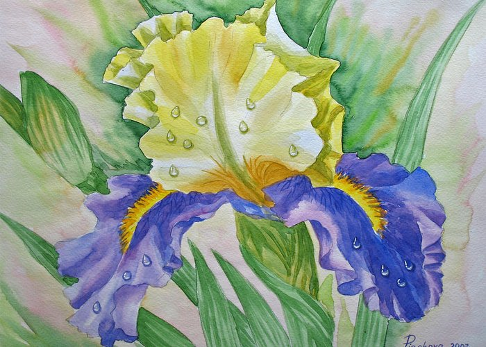 Flowers Greeting Card featuring the painting Dew Drops Upon Iris.2007 by Natalia Piacheva