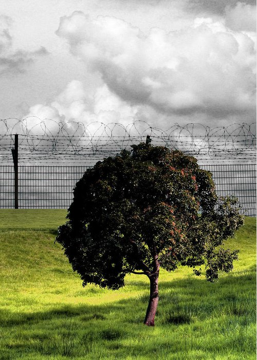 Prison Greeting Card featuring the photograph Digital Photography - The Prisoner by Munir Alawi