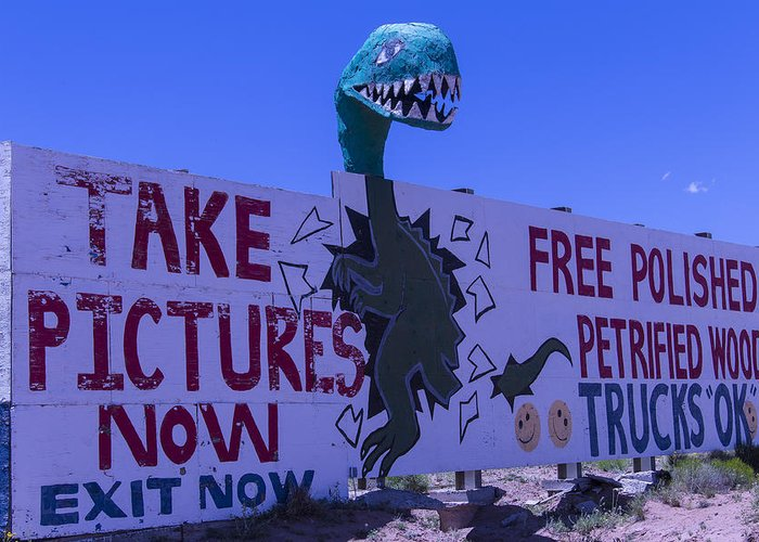 Roadside Dinosaur Greeting Card featuring the photograph Dinosaur Sign Take Pictures Now by Garry Gay