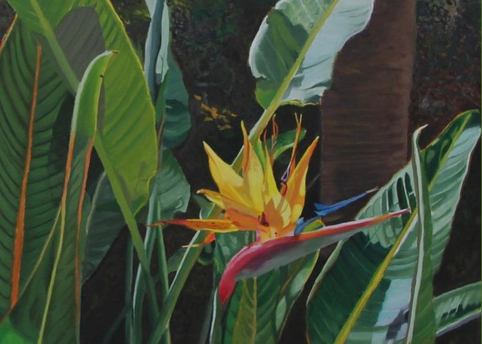 Bird Of Paradise Greeting Card featuring the painting Dirty Birdie by Christine Wichers
