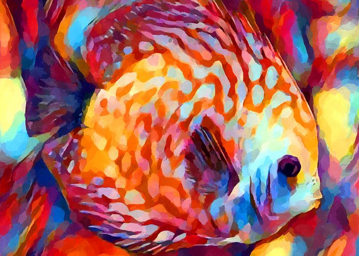 Discus fish greeting card for sale by chris butler discus fish greeting card featuring the painting discus fish by chris butler m4hsunfo