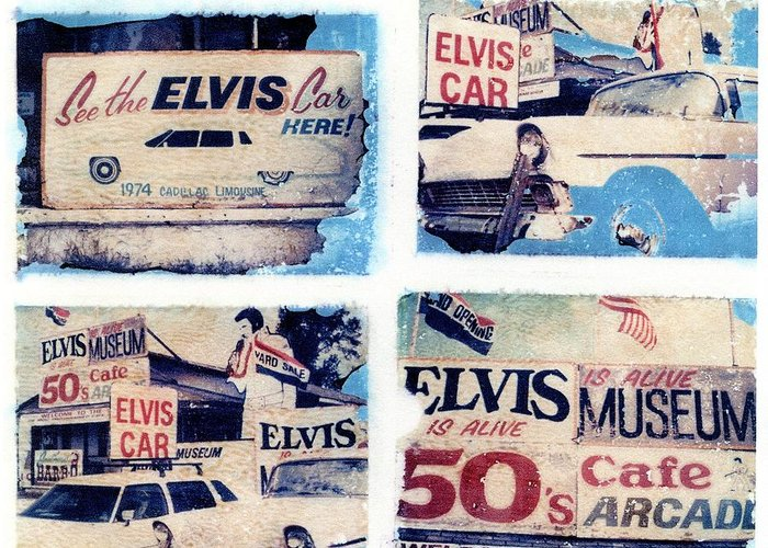 Elvis Greeting Card featuring the photograph Disgraceland by Jane Linders