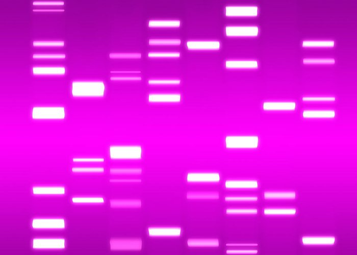 Dna Greeting Card featuring the digital art Dna Magenta by Michael Tompsett
