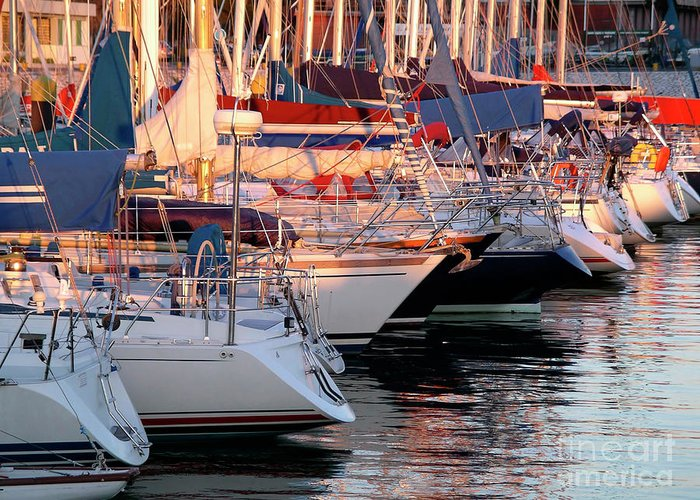 Anchor Greeting Card featuring the photograph Docked Yatchs by Carlos Caetano