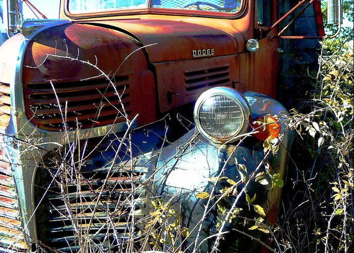 Truck Greeting Card featuring the photograph Dodging Weeds by JoAnn SkyWatcher