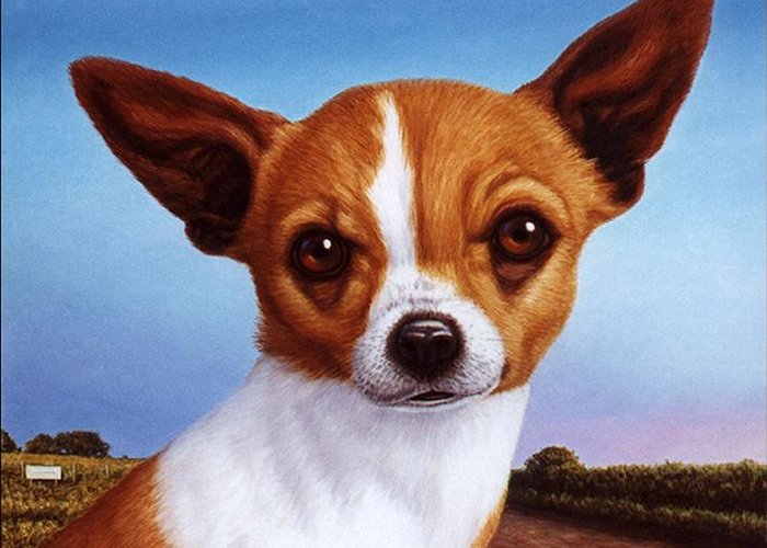 Chihuahua Greeting Card featuring the painting Dog-nature 3 by James W Johnson