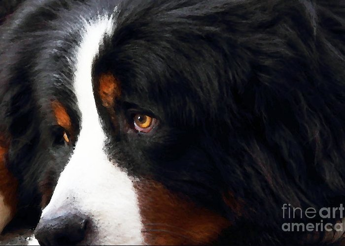 Animal Greeting Card featuring the photograph Dog . Photo Artwork by Wingsdomain Art and Photography