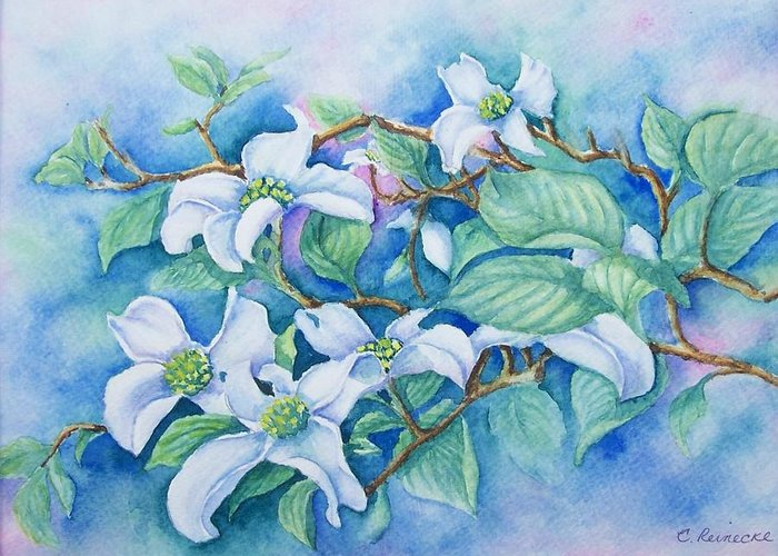 Floral Greeting Card featuring the painting Dogwood by Conni Reinecke