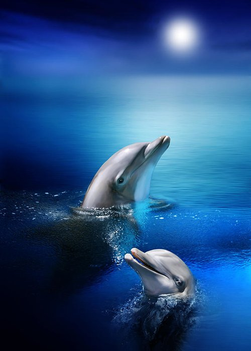 Dolphin Greeting Card featuring the digital art Dolphin Delight by Julie L Hoddinott