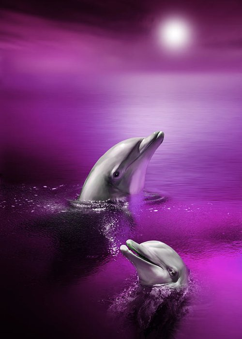 Dolphin Greeting Card featuring the digital art Dolphin Delights by Julie L Hoddinott