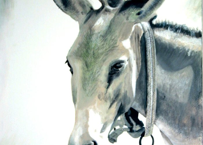 Donkey Greeting Card featuring the painting Donkey by Fiona Jack