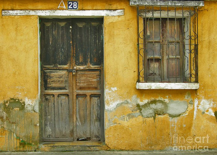 Door Greeting Card featuring the photograph Door And Window by Derek Selander