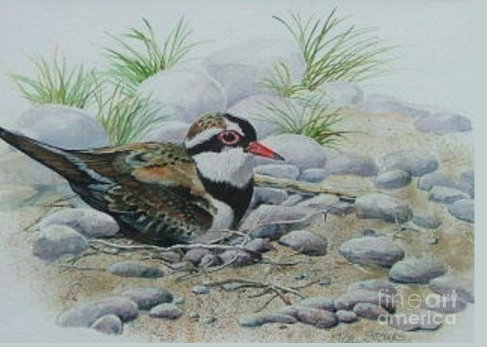 Pebbles Greeting Card featuring the painting Dotterol by Val Stokes