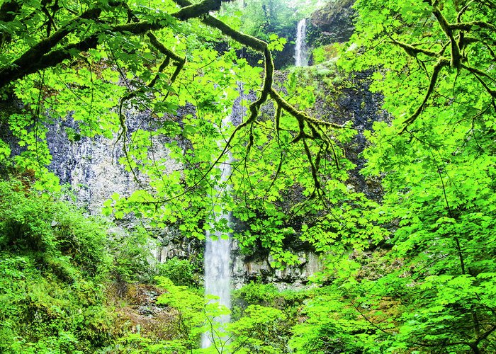 Water Falls Greeting Card featuring the photograph Double Falls 2 by Mike Wheeler
